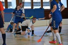 Unihockey Giswil Dragons 2016_025